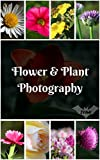 Flower & Plant Photography Photo Book: Blossom Photo, Bloom Photo, Floral Photo, Tree Photo, Flower Photo, Nature Photo, Garden Photo, Rose Photo
