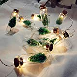 H+K+L 1M Battery Operate Christmas Party Tree Mason Jar String Fairy Lights Glass Bottle Garland Home Decoration (Multicolor)