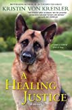 img - for A Healing Justice book / textbook / text book