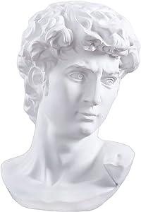 QueenBox 11.4 inch David Busts Sculpture Classic Greek David Statue Figurine Figure Mannequin Painting for Artist