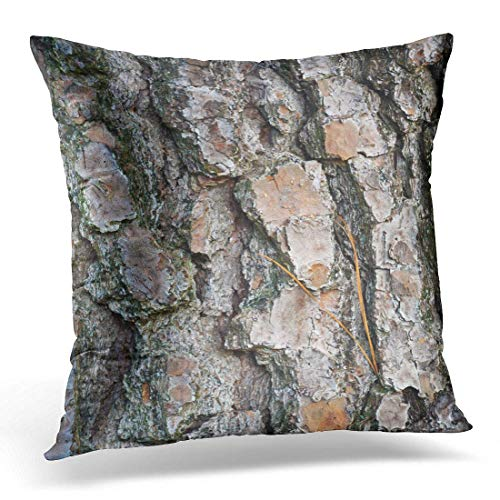 Better One Krui-LR Throw Pillow Cover Abstract Close Up on Bark from Southern Loblolly Pine Tree Also Known As Yellow Carolina Decorative Pillow Case Home Decor Square 18