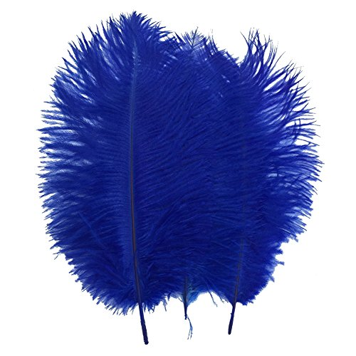 Shekyeon Royal Blue 10-12inch 25-30cm Ostrich Feather Home Decoration DIY Craft Pack of 10