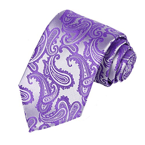KissTies Lilac Purple Paisley Tie Lavender Necktie + Present ()