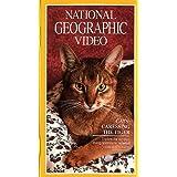 Nat'l Geo: Cats - Caressing the Tiger