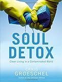 Soul Detox, Craig Groeschel, 0310333687