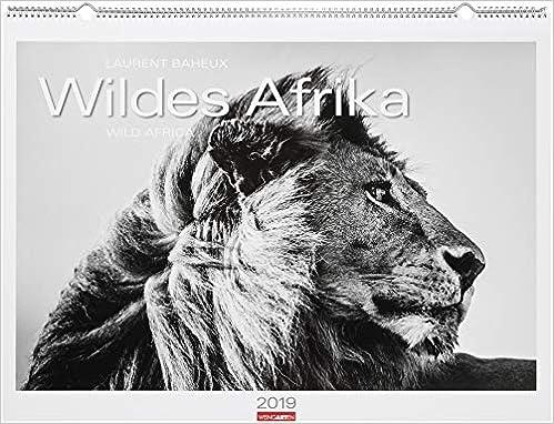wildes afrika kalender 2019