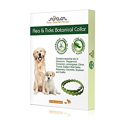 Arava Flea and Tick Control Collar for Dogs and Puppies, Length-25'' - Natural active ingredients, Safe for Babies, Natural Coating Safely Repels Pests - Prevention, Control & Enhanced Defense from Arava Dead Sea Pet SPA
