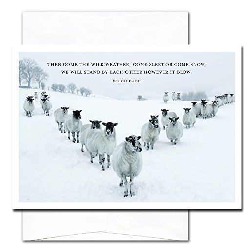 Sleet or Snow: New Year Holiday Cards - box of 10 cards & envelopes