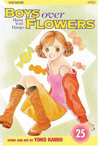 Boys Over Flowers, Vol. 25 -