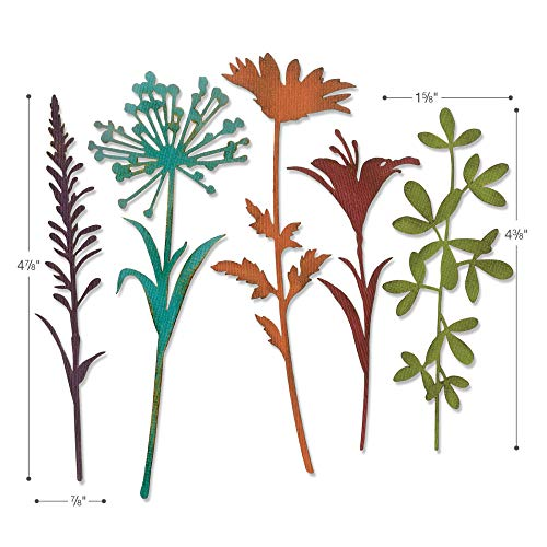 Tim Holtz Sizzix Flower Stems Thinlit Bundle - Wildflower Stems #1 and Wildflower Stems #2 by Tim Holtz (Image #4)