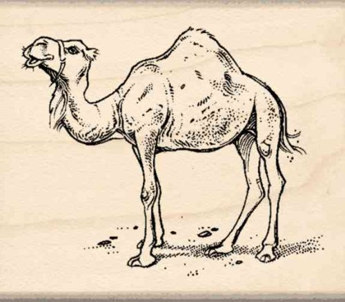 Camel Rubber Stamp - 1-3/4 inches x 2 inches