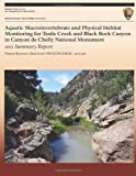 Aquatic MacRoinvertebrate and Physical Habitat Monitoring for Tsaile Creek and Black Rock Canyon in Canyon de Chelly National Monument, Stacy E. Stumpf, 1491068957