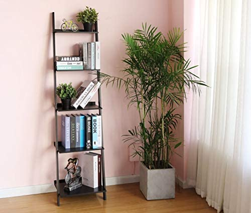 HYNAWIN Ladder Shelf 5 Tier Bookcase
