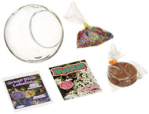 Dunecraft Mini Fairy Garden Science Kit by DuneCraft (Image #3)