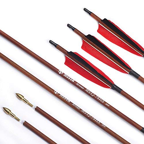 (Musen 30 Inch Carbon Shaft Archery Arrows, Spine 500 with Replaceable Bullet Point Tips & 4