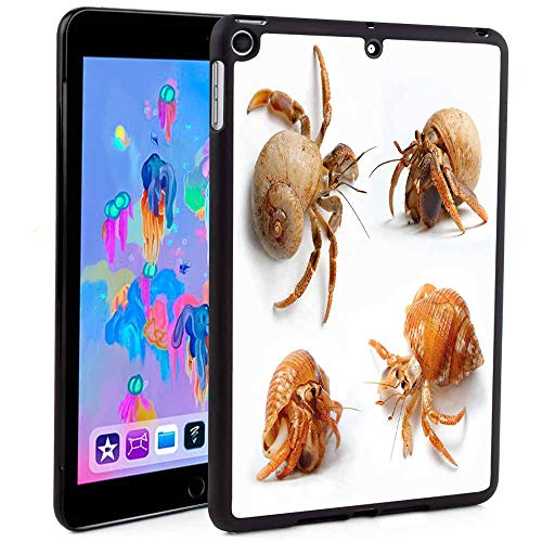 - iPad Mini 5 2018/2017 Case 7.9 inch,Sea Animals Theme Set of Hermit Crabs from Caribbean Seascape Digital PrintAuto Sleep/Wake Cover,for Apple iPad Mini 5th Generation (Custom Pattern iPad case)