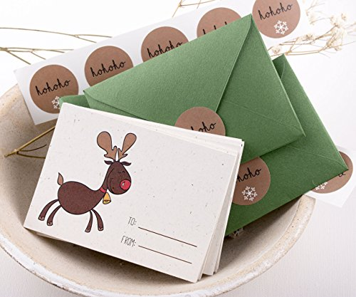 Mini Christmas Cards Set, Season Greetings Christmas Card Pack, Holiday cards Set Santa Greetings Cards Set with Envelopes - 12CT by XOXOKristen