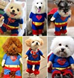 Couture Pet Apparel Superhero Costume Superman Dog Coat Clothes Size XS by Unknown Review