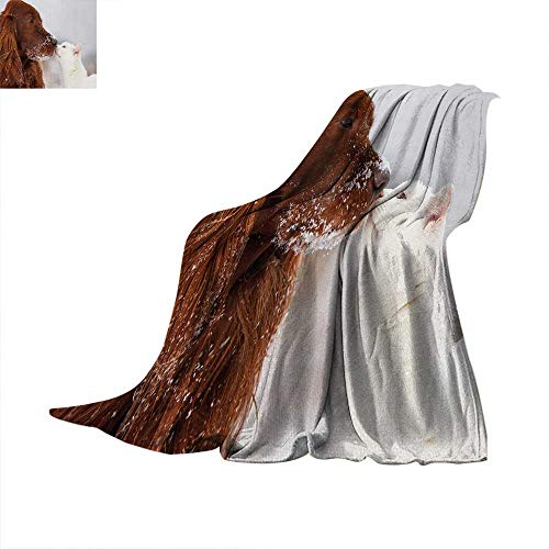 "Anhuthree Winter Custom Design Cozy Flannel Blanket Irish Setter and Cute White Cat in Snow Kissing Friendship Love Romance Oversized Travel Throw Cover Blanket 50""x30"" Dark Orange White Beige"