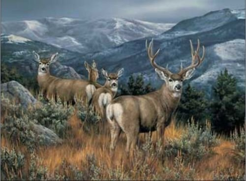100% Genuine Real Hand Painted Animal Mule Deer Canvas Oil Painting for Home Wall Art Decoration, Not a Print/ Giclee/ Poster by Generic