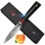 TUO Cutlery Paring Knife 3.5 inch, Japanese AUS-10 High Carbon Rose Damascus Steel, Peeling Fruit Knives with Ergonomic G10 Handle - RING R Series