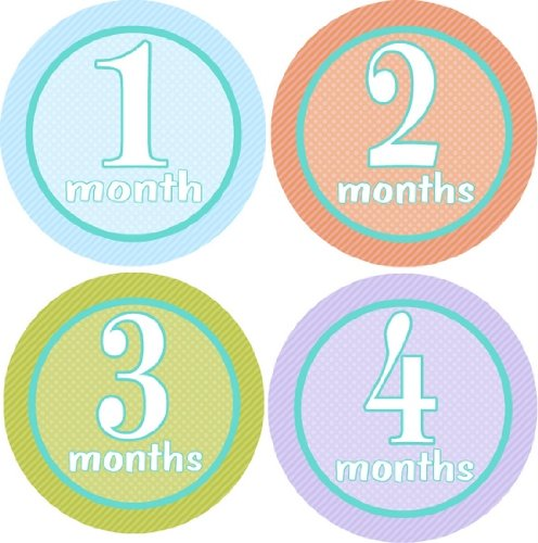 - Serene Monthly Baby Bodysuit Stickers