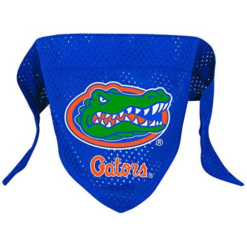 Hunter Mfg. LLP NCAA Florida Gators Pet Bandana, Team Color, Small