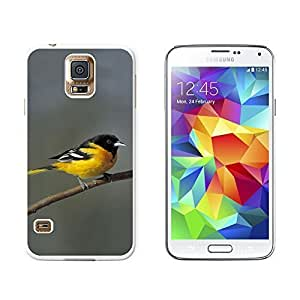 New Style Baltimore Oriole - Bird - Snap On Hard Protective Case for Samsung Galaxy S5 - White