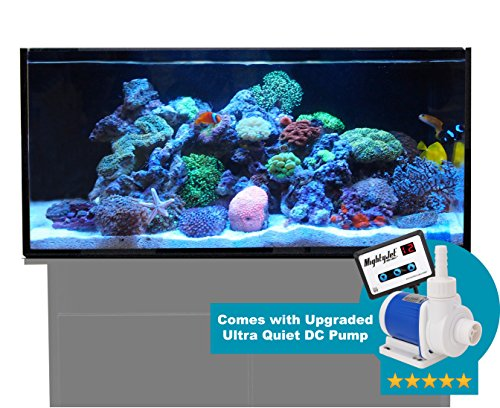 Reef Nano Tank - Innovative Marine Nuvo SR (Shallow Reef) 60 Gallon AIO (All-in-one) Aquarium with 2X Upgraded Mighty Jet Midsize DC Return Pump