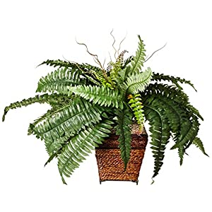 Nearly Natural Boston Fern Silk Plant with Wicker Basket 14