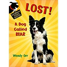 LOST! A Dog Called Bear (Rainbow Street Shelter)