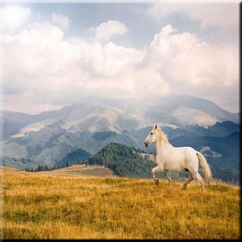 "Rikki Knight White Galloping Mountain Horse Design Ceramic Art Tile, 8"" x 8"""