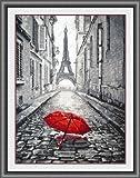Glory GNI Red Umbrella in Paris Rain Counted Cross Stitch Kit, White Cloth