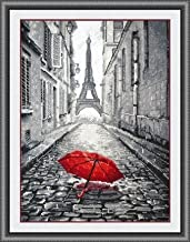 Glory GNI Red Umbrella Counted Kit
