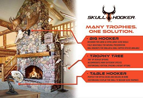 Trophy Tree European Trophy Mount by Skull Hooker – Hang up to 5 Deer Antlers and other Skulls for Display – Graphite Black by Skull Hooker (Image #6)