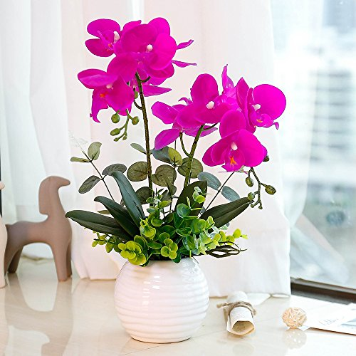 YILIYAJIA Artificial Orchid Bonsai with Ceramics Vase, Fake PU Real Touch Flowers Phalaenopsis Bonsai for Table Office Home Party Decoration(Style 1, White Vase) Ceramic Orchid Bonsai Pot
