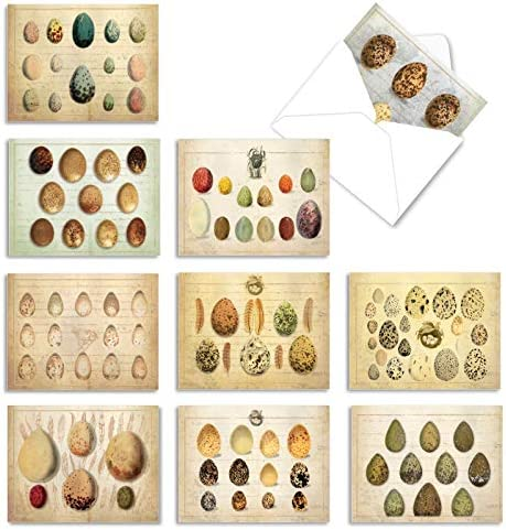 10 'Egg-Cellence' Thank You Note Cards...
