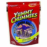 Arctic Paws Salmon Jerky 4-Ounce Yummy Chummies Jerky Treats