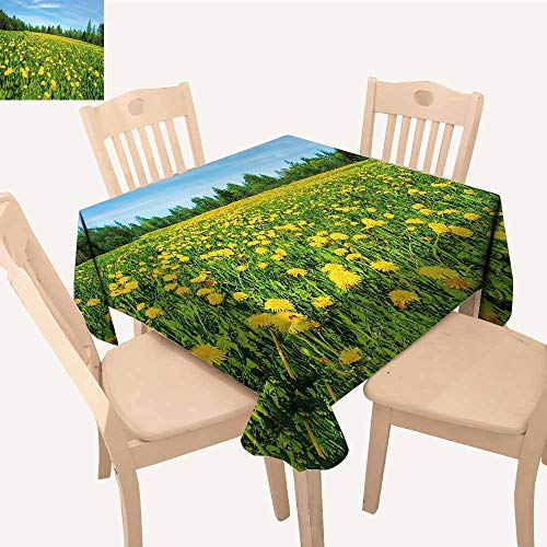 UHOO2018 Square/Rectangle Polyesters Tablecloth Meadow Flowers, d delion fie Wedding Party,52x 52 inch