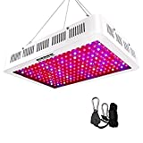 HIGROW 2000W Double Chips LED Grow Light Full Spectrum Grow Lamp with Rope Hanger and Daisy Chain for Greenhouse Hydroponic Indoor Plants Veg and Flower (10W LEDs) Review