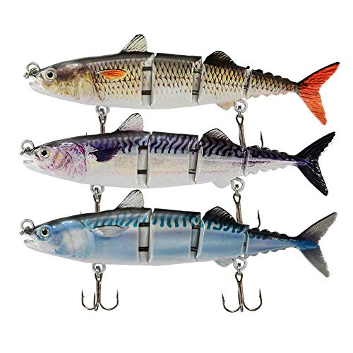 (ROSE KULI Fishing Lures Saltwater Freshwater Hard Lures for Bass Large Fish Lures Lifelike Fishing Tackle Kits)