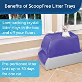 PetSafe ScoopFree Top-Entry Ultra Self-Cleaning Cat Litter Box – Automatic with Disposable Tray