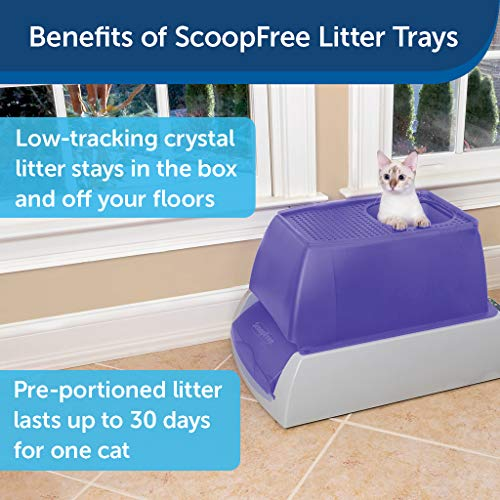 PetSafe ScoopFree Top-Entry Ultra Self-Cleaning Cat Litter Box - Automatic with Disposable Tray