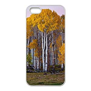 super shining day HD Image Brich Pattern Apple iPhone 5/5S TPU Material Back Cover