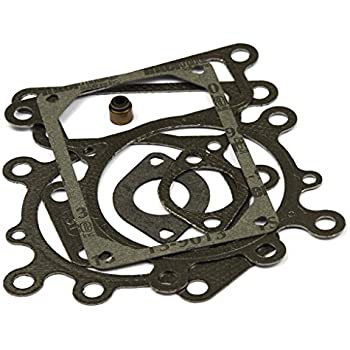 Amazon com: Briggs & Stratton 794114 Cylinder Head Gasket
