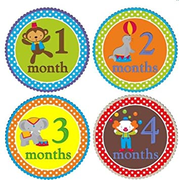 Amazing Monthly Stickers Baby Month Stickers Baby Boy Monthly Stickers Monthly Baby Boy Stickers Circus Interior Design Ideas Lukepblogthenellocom
