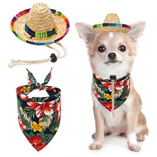 BINGPET Dog Sombrero Hat with Bandana