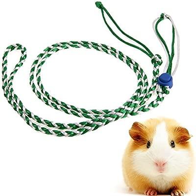 Powlance - Arnés de Cuerda Ajustable para Mascotas con Jaula de ...