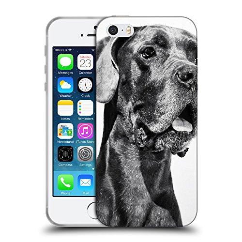 Super Galaxy Schutz Hülle TPU Case Schutzhülle Silikon Tasche Dünn Transparent // F00019524 Deutsche Dogge Hund // Apple iPhone 5 5S 5G SE