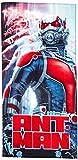 Marvel Ant Man Shift 28'' x 58'' Beach Towel